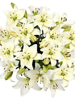 "Flowers Bouquet ""White Lilies"""