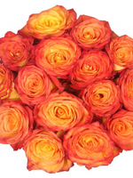 Bouquet of 15 yellow-orange Roses
