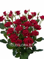Round bouquet of 5 red spray roses