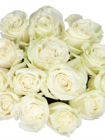 Bouquet of 15 White Mondial Roses
