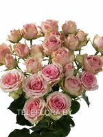 Round bouquet of 5 Peony Majolika Pink Spray roses