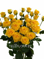 Round bouquet of 5 yellow spray roses