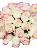 Bouquet of 15 White Pink Roses Sweetnees