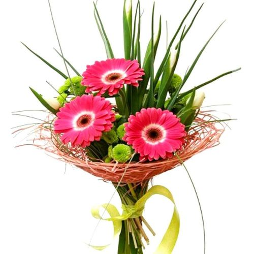 "Gerberas Bouquet ""Pink& Green"""