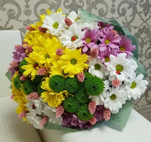 Bouquet of multi-colored chrysanthemums